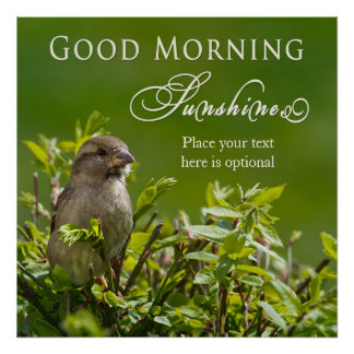 Poster - Good Morning Sunshine - Bird in Bush