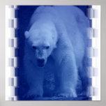 Poster grande del oso polar