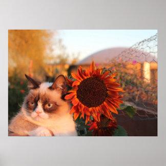 Poster gruñón del girasol del gato