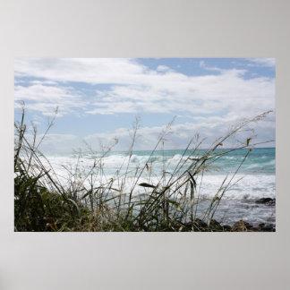 Poster hawaiano del paisaje marino