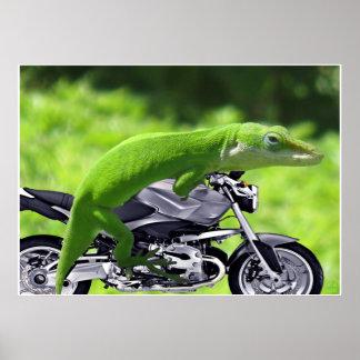 Poster hawaiano verde del jinete del Gecko