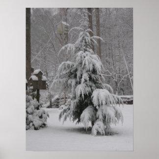 Poster hermoso de la escena del invierno