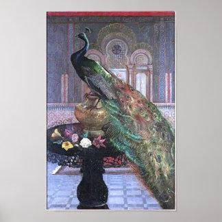 Poster hermoso de la imagen del pavo real del vint