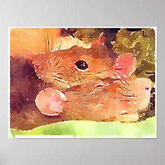Poster hermoso de las ratas