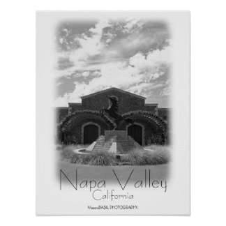 ¡Poster hermoso de Napa Valley!