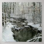 Poster hermoso del arroyo del invierno