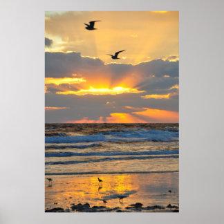 Poster hermoso del paisaje de la salida del sol de
