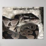 Poster herpetológico de SnakeChaarmer
