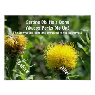 "Poster, Humor, ""Getting Hair Done Perks Me Up"" Poster"
