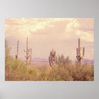Poster ideal del desierto