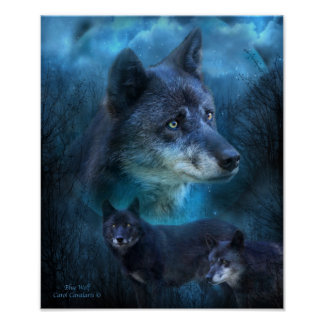 Poster/impresión azules del arte del lobo póster