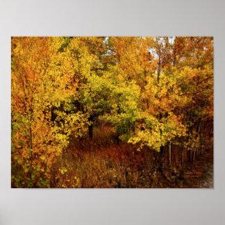 Poster/impresión de la paleta del otoño