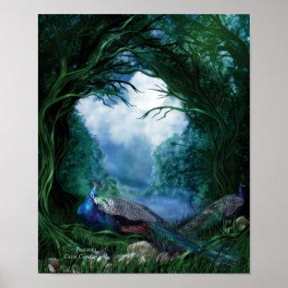 Poster/impresión del arte de los pavos reales