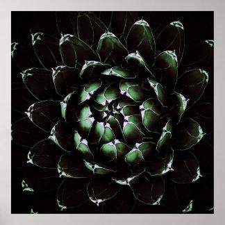 Poster/impresión del cactus del agavo póster