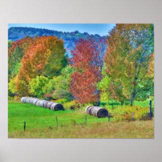 Poster/impresión del campo del otoño