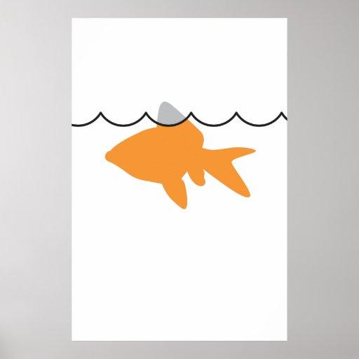 Poster/impresión del tiburón del Goldfish