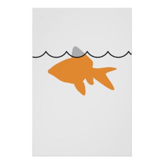 Poster/impresión del tiburón del Goldfish Póster