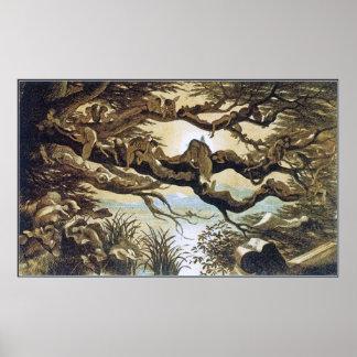 Poster/impresión: Fairyland: Dormido en el claro d