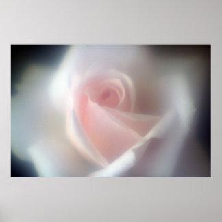 Poster/impresión grandes color de rosa rosados póster