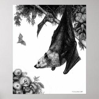 Poster impresiones de los zorros de vuelo
