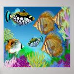 Poster Indo-Pacífico de los pescados del arrecife