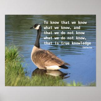 Poster inspirado de la cita de Confucio del ganso