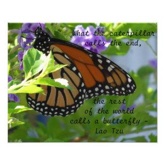 Poster inspirado de la cita de la mariposa de mona cojinete