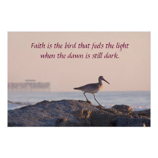 Poster inspirado de la mañana del pájaro de orilla