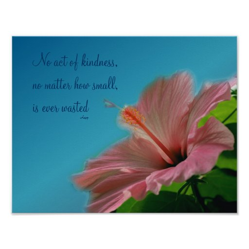 Poster inspirado del hibisco de la amabilidad rosa