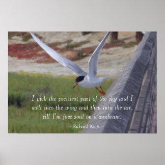 Poster inspirado del pájaro en vuelo -