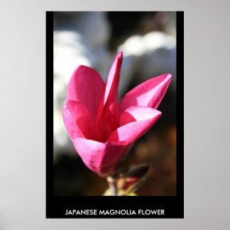 Poster japonés de la magnolia, impresión