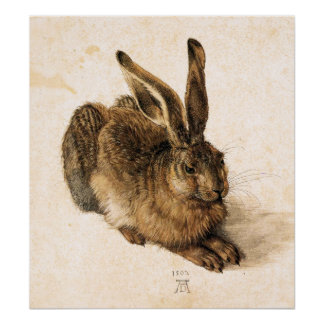 Poster joven de las liebres de Albrecht Durer