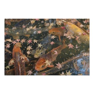 Poster: Koi with autumn leaves