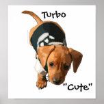 """Poster """"lindo"""" de Turbo por los estudios de Tracey"""
