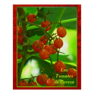 Póster - Los Tomates de Cereza Poster