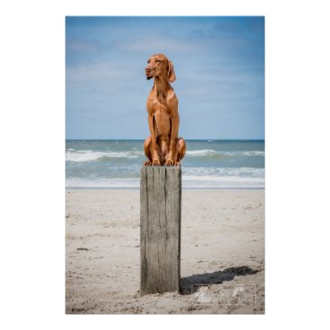 Beach Themed Poster Magyar Vizsla different sizes!!