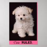 Poster maltés de las reglas lindas
