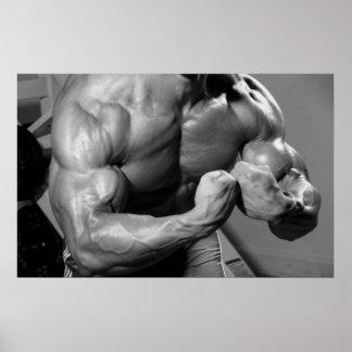 Poster máximo de la pared del gimnasio del bíceps