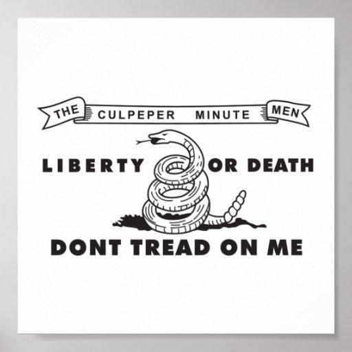 Poster minucioso de la bandera de los hombres de C