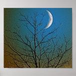 Poster místico del ll de la luna