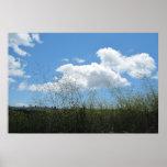 Poster: Mostaza en las nubes
