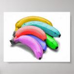Poster multicolor del plátano