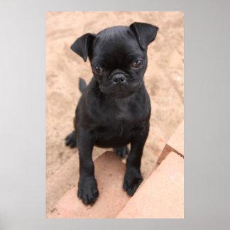 Poster negro del perrito del barro amasado