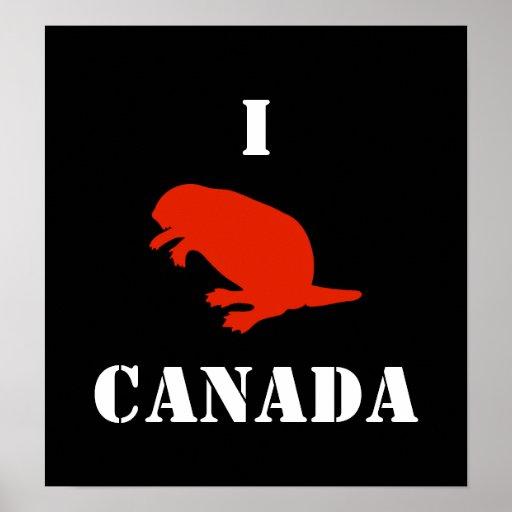 Poster negro rojo del castor del día de Canadá