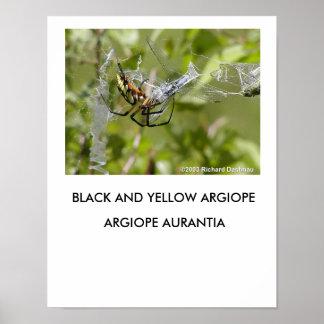 Poster negro y amarillo del Argiope