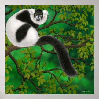 Poster negro y blanco del Lemur Póster