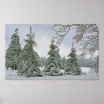 Poster nevado de los árboles