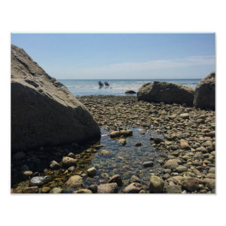 Poster of Cape Cod Beach - Woodneck Beach