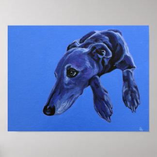 Poster of 'Cobalt Daydream' - blue lurcher dog