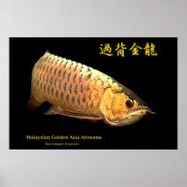 Poster of mareshiangorudenarowana